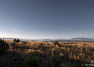 Antelope Island, Great Salt Lake, Utah