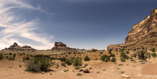 Desert Floor, San Rafael Swell, Utah