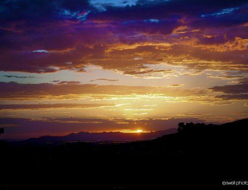 sunset donner park